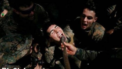 تصویر از عکس های دیدنی و جالب ازخوردن خون مار کبرا سربازان تا . . .