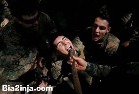 عکس های دیدنی و جالب ازخوردن خون مار کبرا سربازان تا . . .