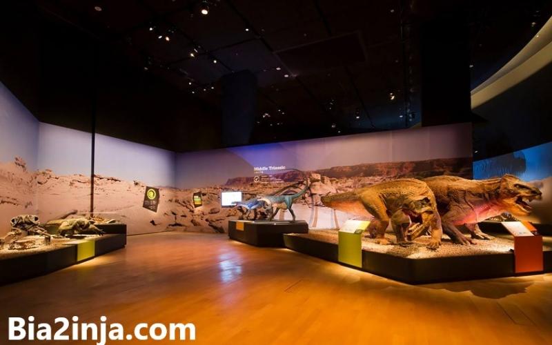 در مورد موزه هنر و علم  (سنگاتپور)
